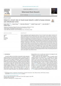 Subjective reward value of visual sexual stimuli is coded in human striatum and orbitofrontal cortex